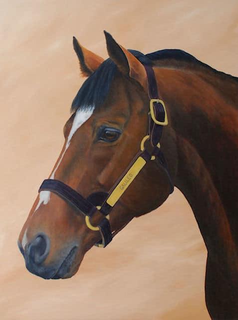 Galileo, stallion, acrylic art, Kathrin Guenther, web file