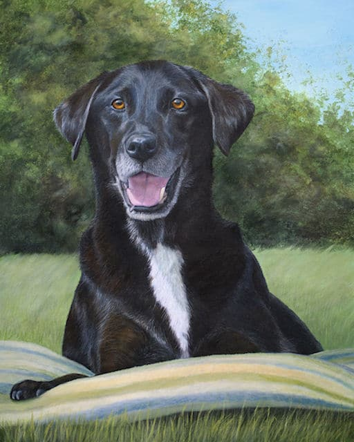 Black Labrador painting by Kathrin Guenther, acrylic painting, equine art