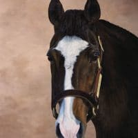 Sadlers Wells, stallion painting by Kathrin Guenther, equine art, acrylic art, favorite commission piece