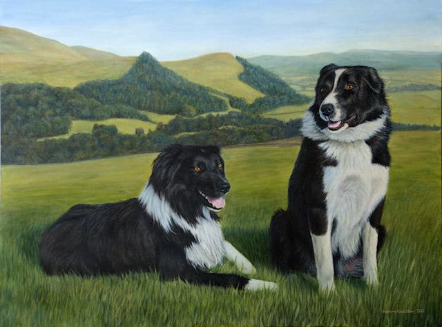 working Sheepdogs from Scotland, painting by Kathrin Guenther, acrylic painting, pet art