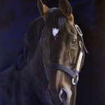 horse painting, stallion, Kathrin Guenther