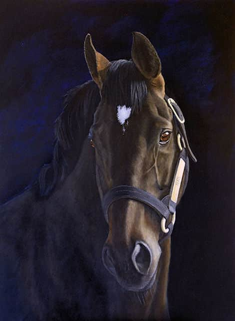 horse, stallion, thoroughbred, Kathrin Guenther, art, acrylic, painting