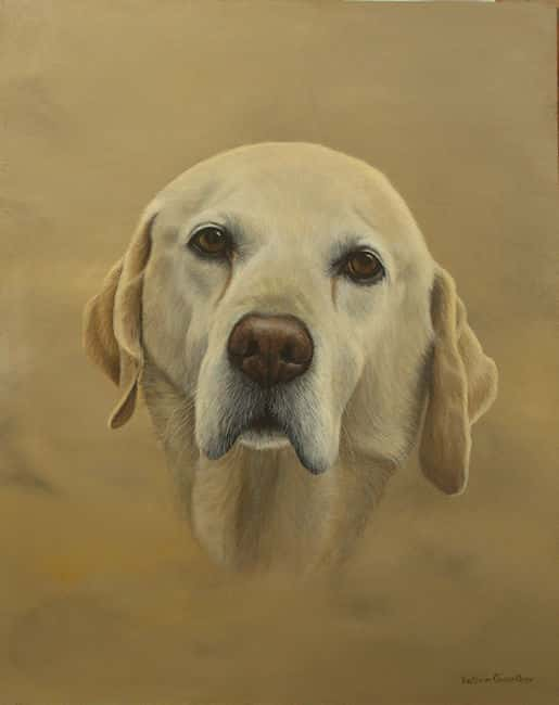 Golden Labrador painting by Kathrin Guenther