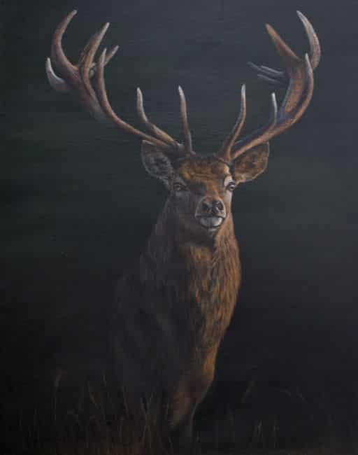 wildlife, stag, painting, Kathrin Guenther, acrylic, art