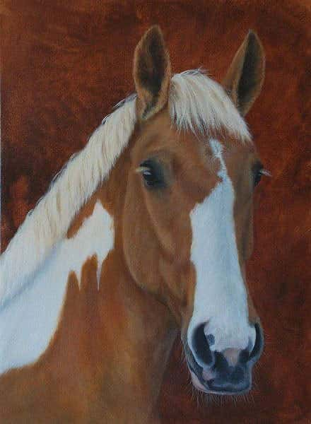 Skewbald mare painting by Kathrin Guenther, acrylic painting, equine art